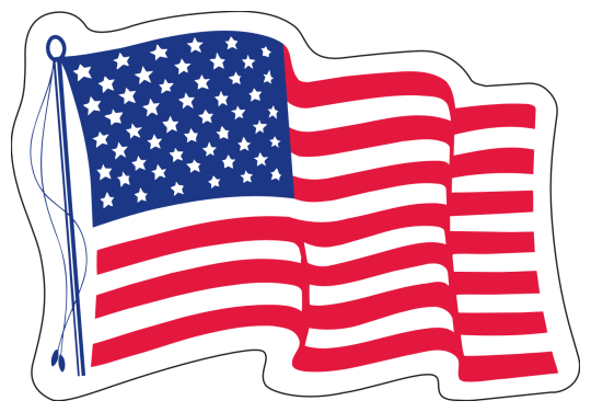 Image of our No. 216 White Vinyl US Flag